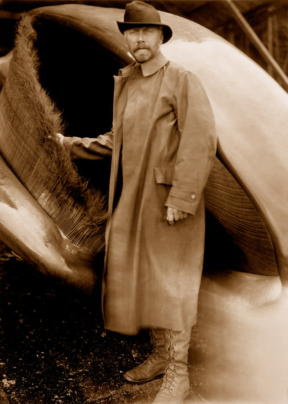 Untitled Self-Portrait (Curtis with Whale), circa 1914